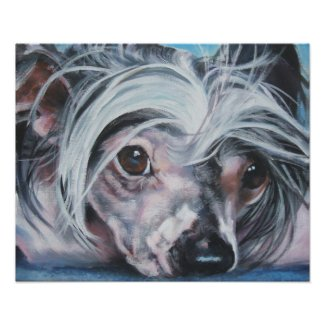 Chinese Crested Art Print print