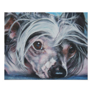 Chinese Crested Art Print
