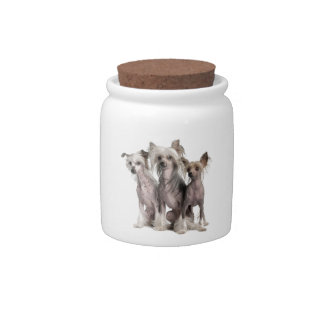 Chinese Crested Candy Jar
