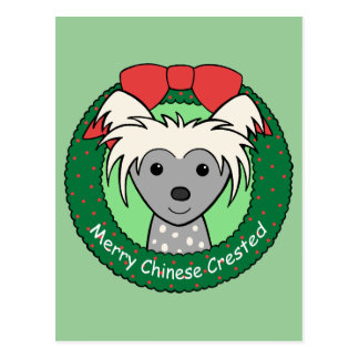 Chinese Crested Christmas Postcard