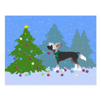 Chinese Crested Decorating a Christmas Tree Postcard