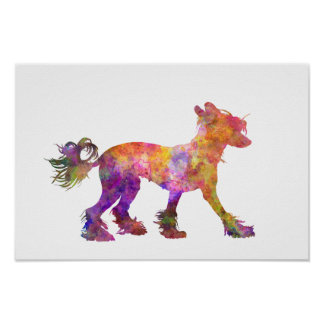 Chinese crested dog 01 in watercolor 2 poster