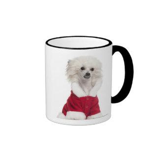 Chinese Crested Dog (1 year old) wearing a Ringer Mug