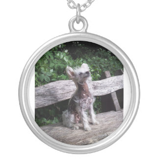 Chinese_Crested_Dog sitting 2.jpg Silver Plated Necklace
