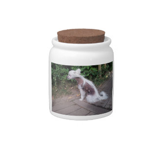 Chinese_Crested_Dog sitting Candy Dish