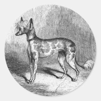 Chinese Crested Dog Vintage Dog Illustration Classic Round Sticker