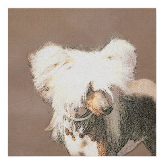 Chinese Crested (Hairless) Poster