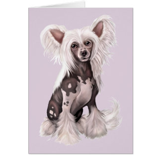 Chinese Crested Hairless Sit Greeting Card