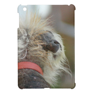 Chinese Crested iPad Mini Cases