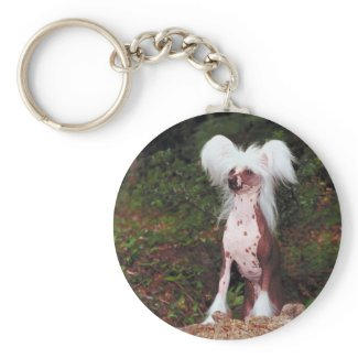 Chinese Crested Keychain keychain