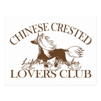 Chinese Crested Lovers Club Postcard