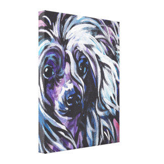 Chinese Crested Pop Art on Stretched Canvas