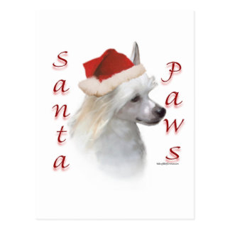 Chinese Crested (powder) Santa Paws Postcard