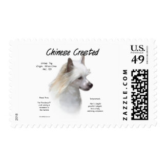 Chinese Crested (powderpuff) History Design Postage Stamp