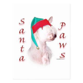 Chinese Crested Santa Paws Postcard