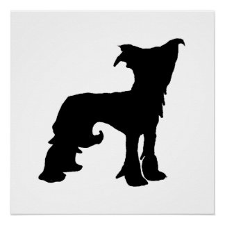 Chinese Crested silo black Poster