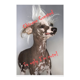 Chinese Crested So Ugly I'm Cute Personalized Stationery