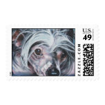 Chinese Crested stamp