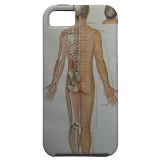 Chinese Doctor Back body acupuncture point map art iPhone SE/5/5s Case