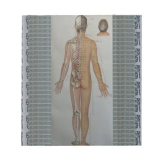 Chinese Doctor Back body acupuncture point map art Note Pad