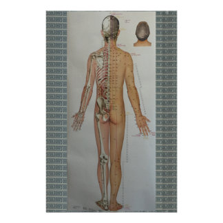 Chinese Doctor Back body acupuncture point map art Stationery