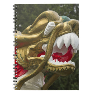 Chinese dragonboat figurehead, Stanley Park Notebook