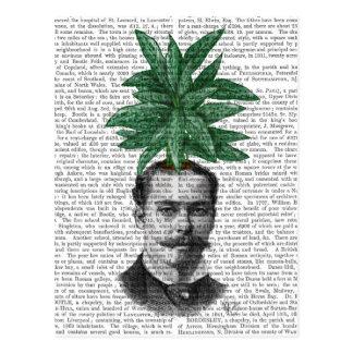 Chinese Evergreen Head Plant Head Postcard