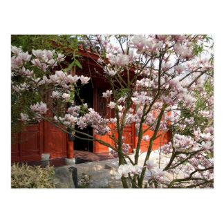 chinese garden postcard