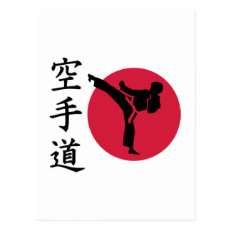 Chinese Karate fighter Postcard