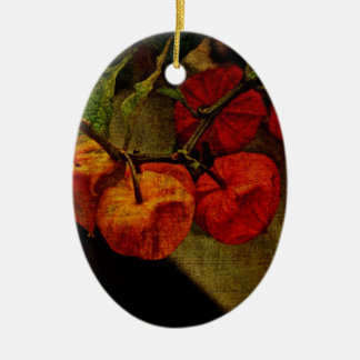 Chinese Lantern Plant With Fruit Christmas Tree Ornament