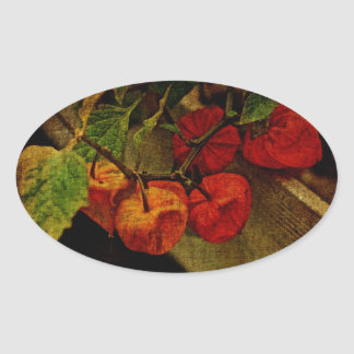 Chinese Lantern Plant With Fruit Oval Sticker