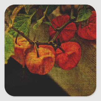 Chinese Lantern Plant With Fruit Square Sticker
