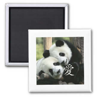 Chinese Loving Little Giant Pandas 2 Inch Square Magnet