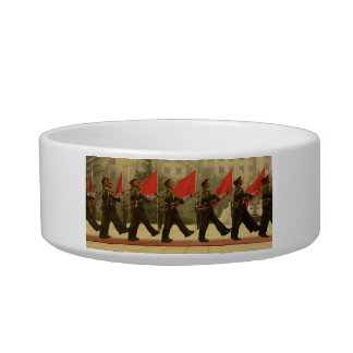 Chinese Military Honor Guard in Column Cat Bowl