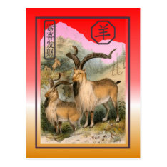 Chinese New Year-2015-year Of The Sheep/goat Postcard at Zazzle