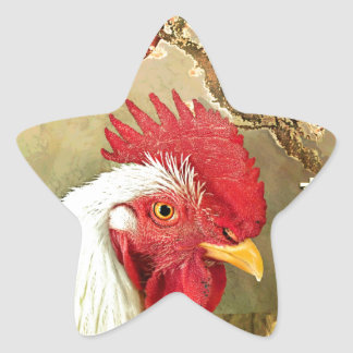 Chinese New Year Rooster & Sunrise on Gold Star Sticker