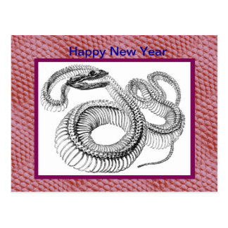 Chinese New Year Vietnamese Tet Year of the snake Postcards