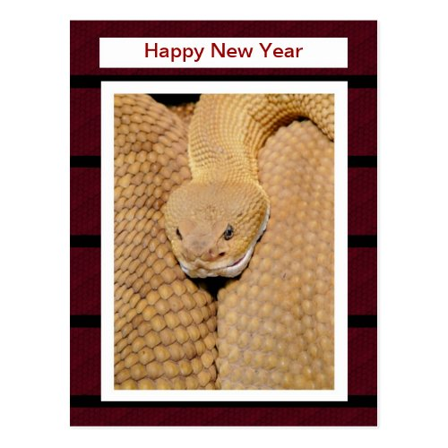 Chinese New Year Vietnamese Tet Year of the snake Postcard Sales 4053
