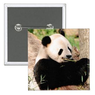 Chinese Panda Button