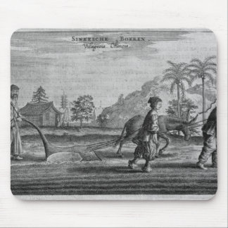Chinese Peasants, a General Description from an ac Mouse Pad