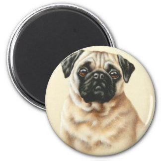 Chinese Pug Magnet