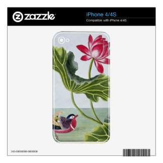 Chinese Red Water Lily, Volume I, plate 82, from ' Skins For The iPhone 4S