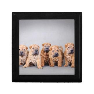 Chinese Sha Pei puppies Jewelry Box