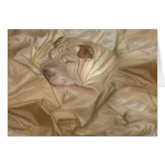 Chinese Shar Pei Camouflaged in Wrinkles Card