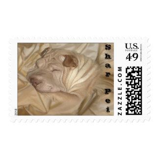 Chinese Shar Pei Camouflaged in Wrinkles Stamp