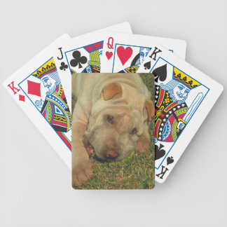 Chinese Shar-Pei Dog Playing Cards