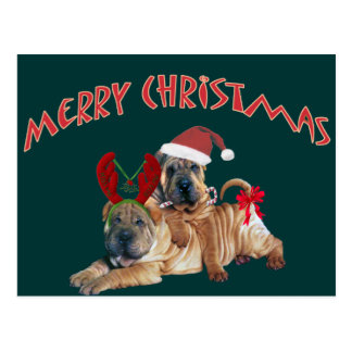 Chinese Shar-pei Merry Christmas Gifts Postcard