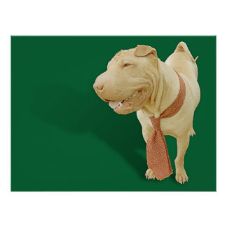 Chinese Shar Pei Poster