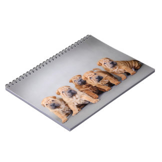 Chinese Shar pei puppies Notebook