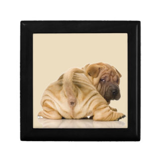 Chinese Shar-pei Puppy Dog Jewelry Box
